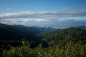 pigeon_forge_6