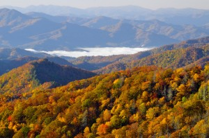 An Autumn morning in Great Smoky Mountains National Park
