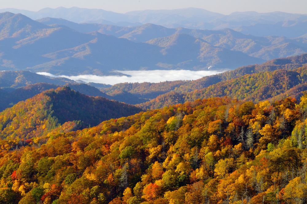 The Beauty Of Autumn Colors In The Great Smoky Mountains